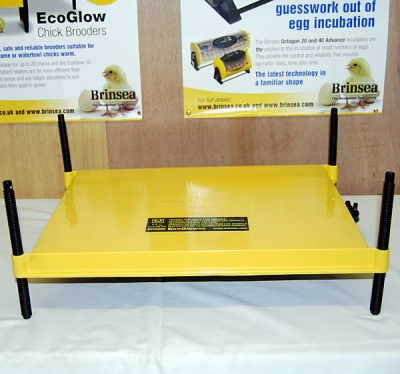 EcoGlow 50 Chick Brooder
