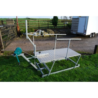 Sheep Trimming Stand