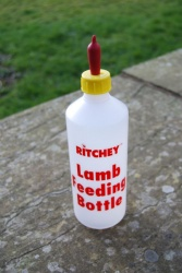 Lamb Feeding Bottle with Pritchard Teat
