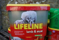 Rumenco Lifeline Lamb & Ewe Bucket 22.5kg